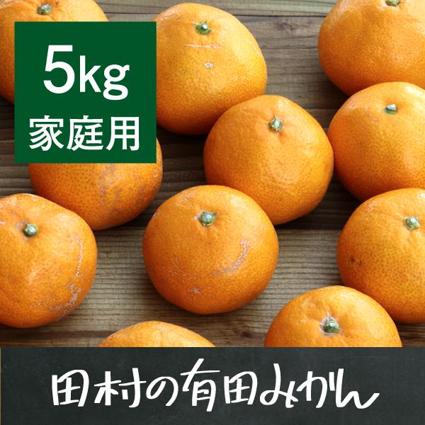 田村の有田みかん5kg(家庭用)