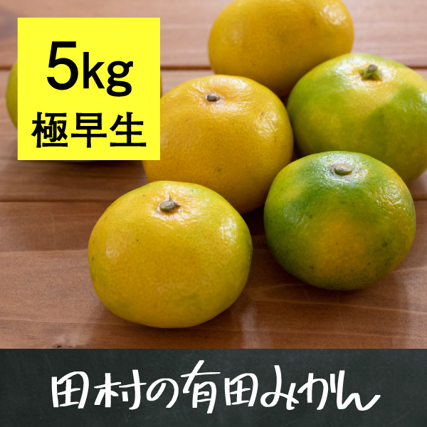 有田みかん5kg(極早生)【10月18日以降出荷】