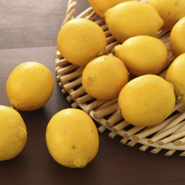小南のリスボンレモン1kg