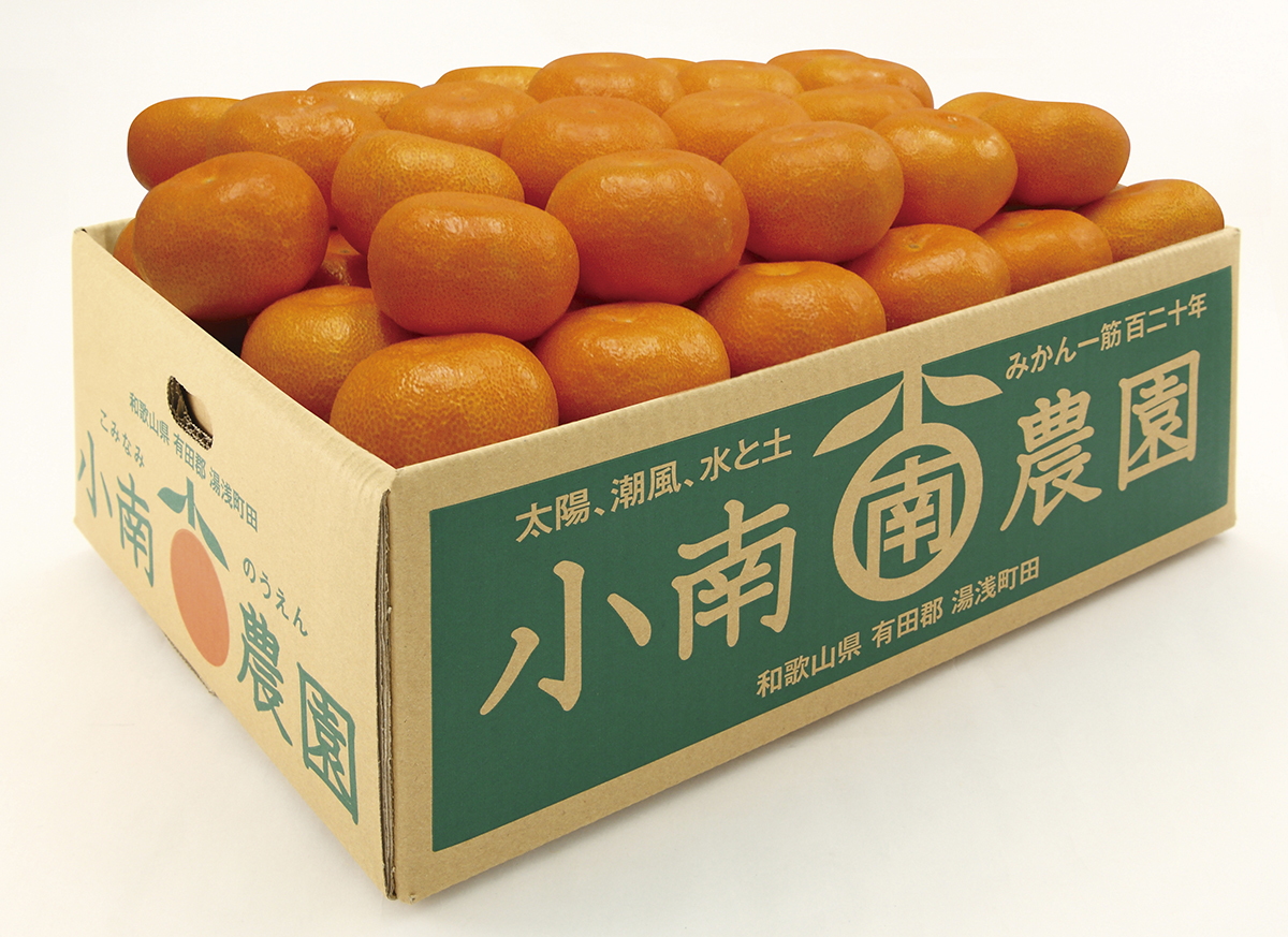 田村の有田みかん5kg(特選)【11月17日以降出荷】