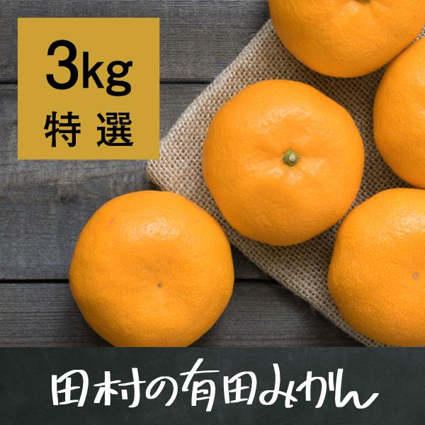 田村の有田みかん3kg(特選)【11月17日以降出荷】
