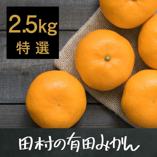 田村の有田みかん2.5kg(特選)