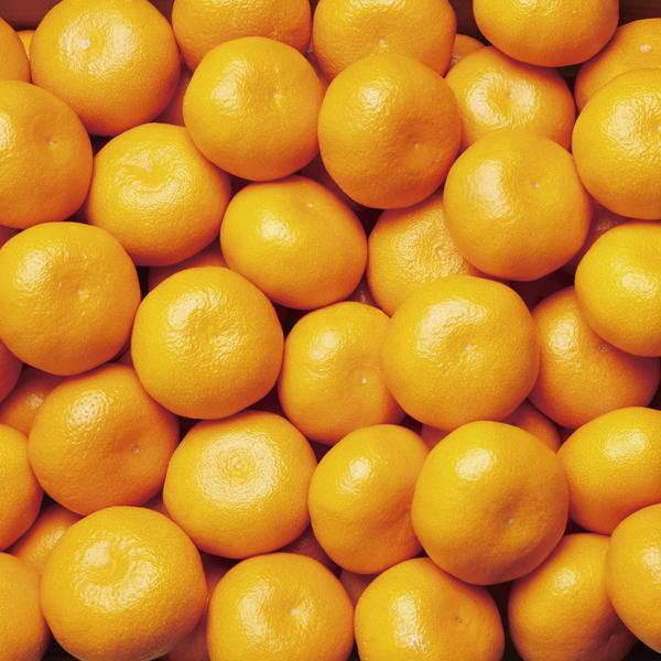 【12月下旬~1月上旬の収穫予定】小南の丹生温州みかん 3kg