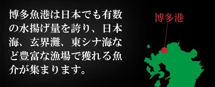 産地直送【のどぐろ入り豪華一夜干し詰合せ】九州 お取り寄せ 干物 ひもの 食べ比べ セット 魚 お歳暮 ギフト 贈答 おつまみ 帰省暮 送料無料