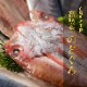 産地直送【のどぐろ入り天然鮮魚一夜干しセット】九州 お取り寄せ 干物 ひもの 食べ比べ 豪華 魚 お歳暮 ギフト 贈答 おつまみ 帰省暮 送料無料
