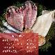 産地直送【おつまみ一夜干しセット】九州 お取り寄せ 干物 ひもの 食べ比べ 豪華 魚 無添加 お歳暮 ギフト 贈答 記念 熨斗 帰省暮 送料無料