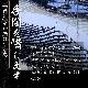 味付け海苔(8切48枚×5本) 有明産 柳川海苔 一番摘み