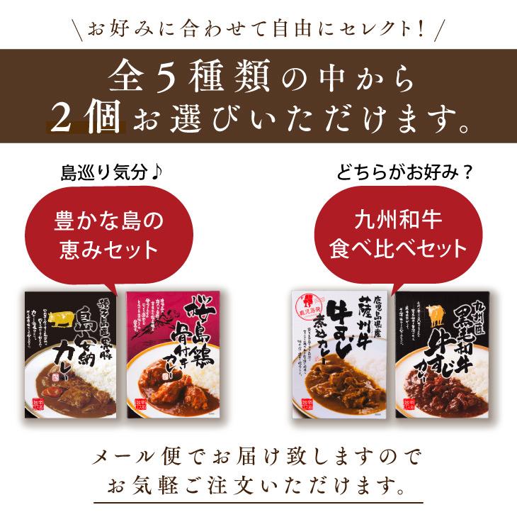 【送料無料】 レトルトカレー お試し2個セット [ 選べる 国産 九州産 牛肉 豚肉 鶏肉 ご当地カレー ]