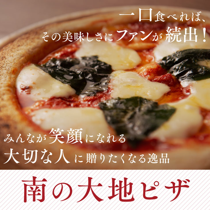 THE PIZZA 3枚選んでセット 南の大地 ピザ お歳暮 帰省暮