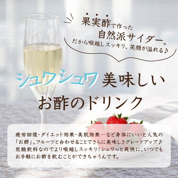 【送料無料】 ビネガーサイダ—12本入り お歳暮 帰省暮