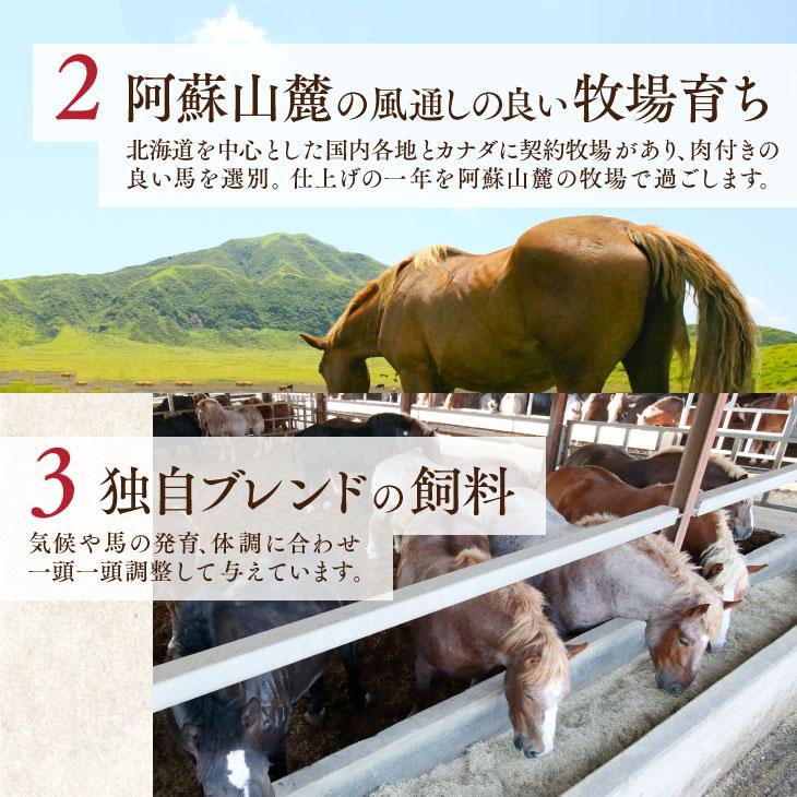 「馬刺し+焼酎 晩酌 詰め合わせ (竹) 」 冷凍便  馬肉 詰め合わせ【送料無料】