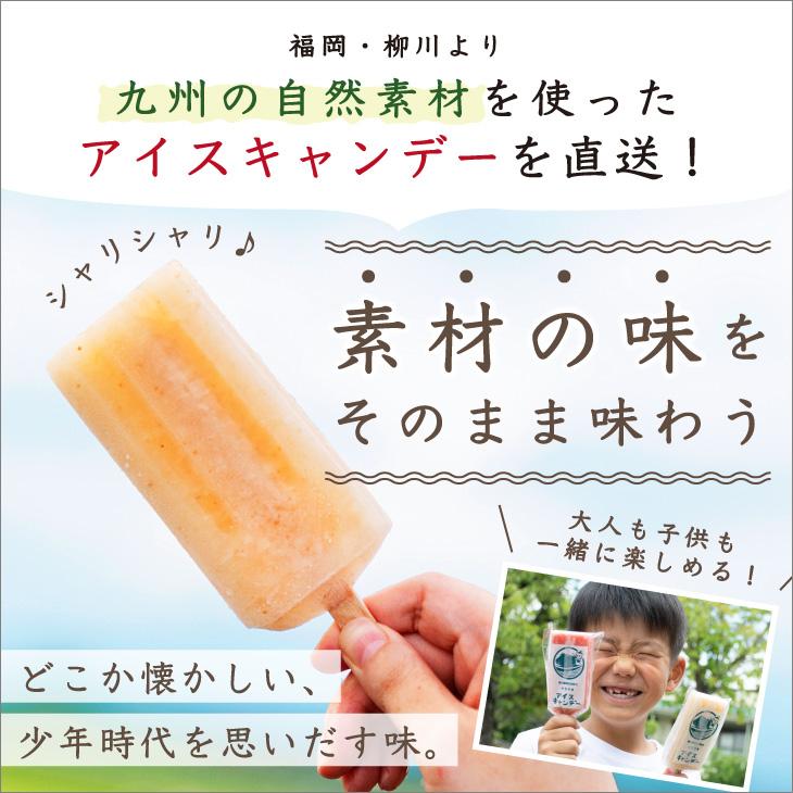 【送料無料】 柳川育ちのいちじくアイスキャンデー 8本(1種×8本)