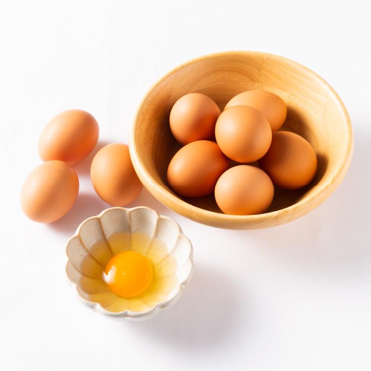 「ヒラノの輝黄卵」 10個×12ケース ビタミンE強化 平野養鶏場 農場直送 福岡 ブランド卵 【送料無料】