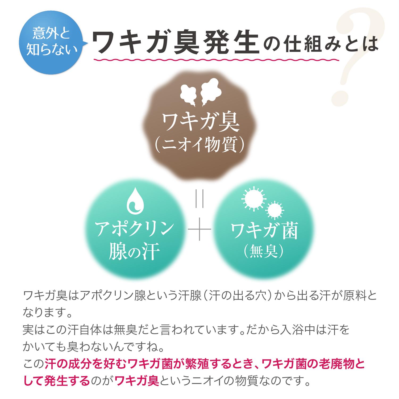 【定期購入商品】衣類用抗菌消臭剤ヌーラビオ(詰替パック)お届け日設定可能