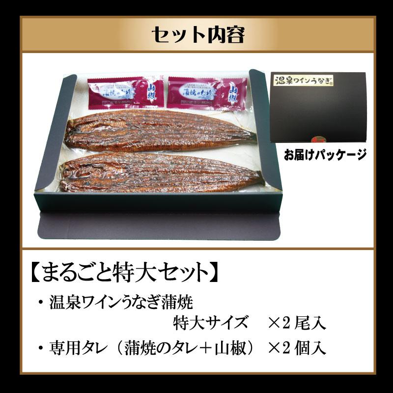 甲信食糧 温泉ワインうなぎ1尾まるごとセット(特大2尾)
