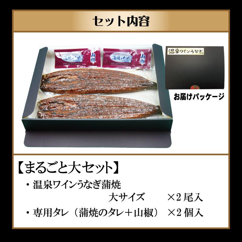 甲信食糧 温泉ワインうなぎ1尾まるごとセット(大2尾)