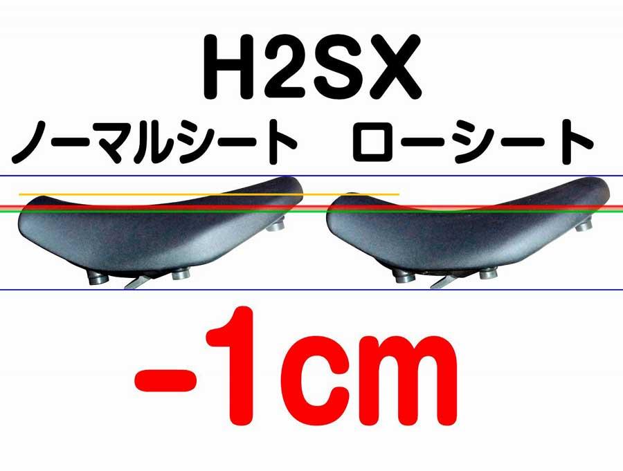 H2SX('18-) ローシート (-10mm+低反発素材)