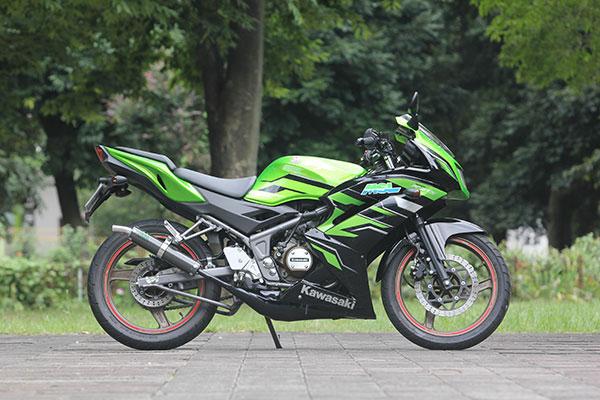 Ninja150RR  ジャッカルチャンバー - カーボン - 公道走行可能