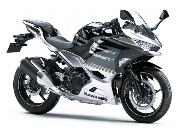 Ninja250 / 400 ('18-)  Z250 / 400('19-)  ラジエターコアガード  シルバー