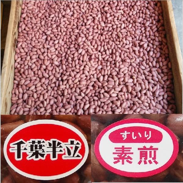 国産 落花生 千葉県産 高級 半立 素煎 体にいいピーナッツ 缶入り 130g