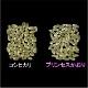 プリンセスかおり2kg【カレー・炒飯・パエリアがプロも認める味になる香り米】
