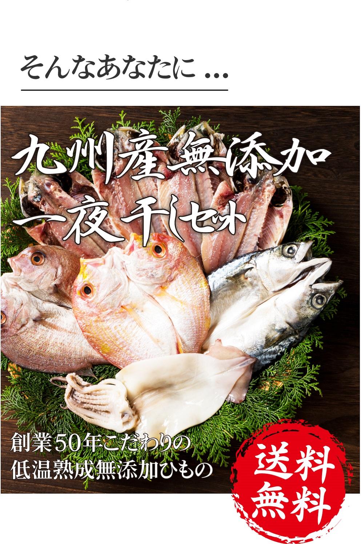 【送料無料】九州産無添加干物セット 5種 890g