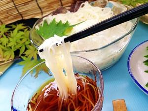 島原本格手延素麺白瀧 高橋謙作製麺 1.5kg(50g×30束)
