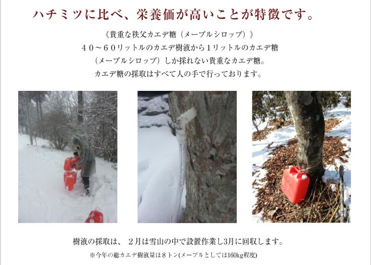 すのうぼうる(8ヶ入り) モンドセレクション3年連続金賞