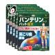 【第2類医薬品】★バンテリンコーワパットEX 21枚 × 5個セット【Kowa 興和】