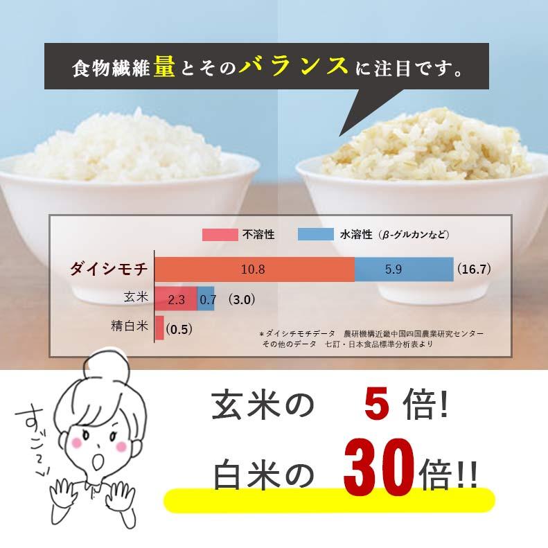 国産ダイシモチ100% にっぽんのもち麦400g 2袋セット