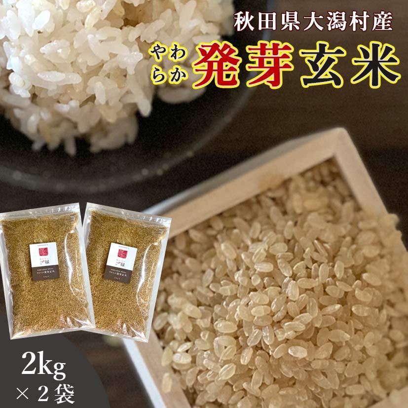 秋田県大潟村産 発芽玄米 2kg 2袋セット