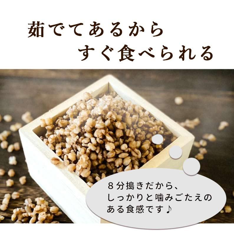 国産ダイシモチ100% かけるもち麦 270g 2袋セット