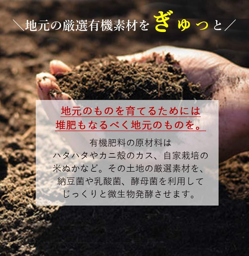 秋田県産 有機黒米 400g 2袋セット