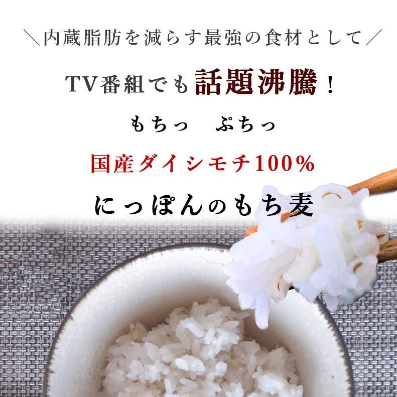 国産ダイシモチ100% にっぽんのもち麦 400g 12袋セット