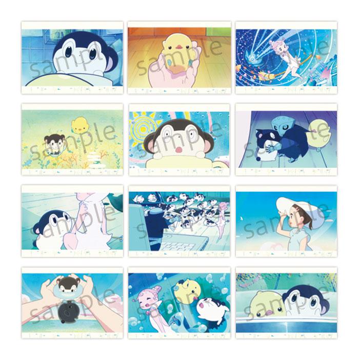 バジャのスタジオ〜バジャのみた海〜 ポストカードセット【在庫品】