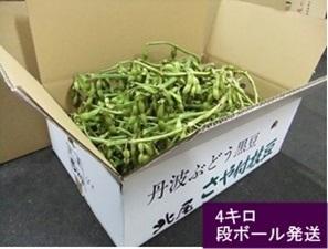 【ご予約受付】京丹波 黒豆枝豆 4kg