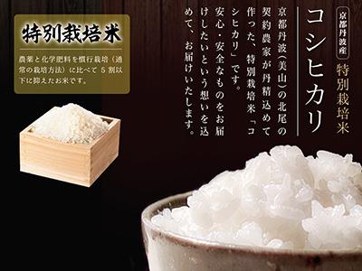 【ご予約受付】特別栽培米コシヒカリ2kg