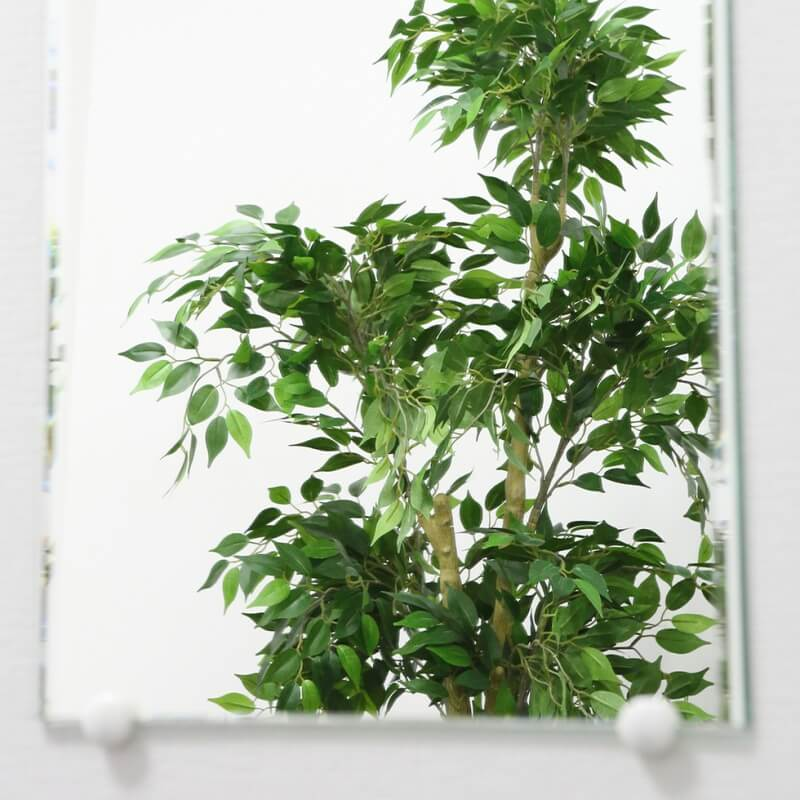 壁面鏡ショコラ 高400 × 幅320