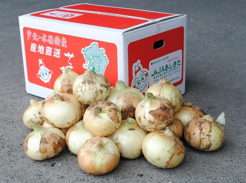 熊本県産 サラたまちゃん10kg
