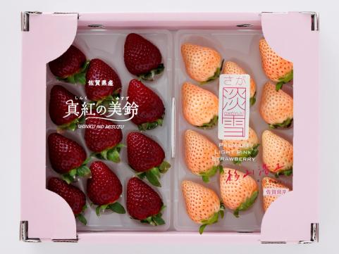 佐賀「杉山いちご農園」真紅の美鈴・淡雪 いちごセット
