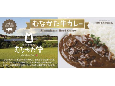 【 九旬直送便 】福岡「オルトアンドカンパニー」宗像の自然でのびのび育った牛肉をゴロッと贅沢に使いました むなかた牛カレー