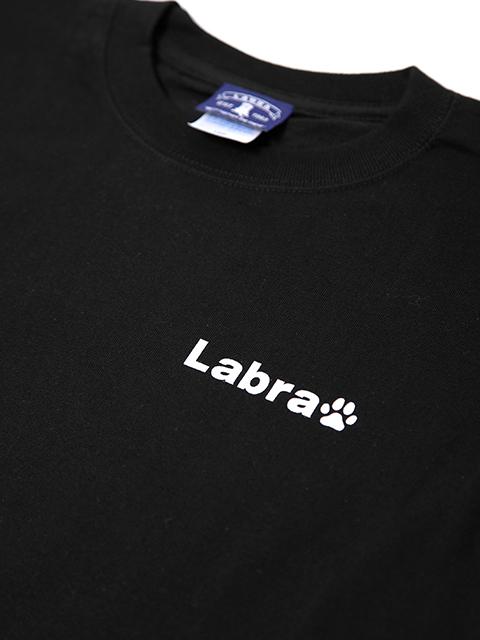 LADY's 【定番】バックロゴプリントTシャツ [ネコポス対応]
