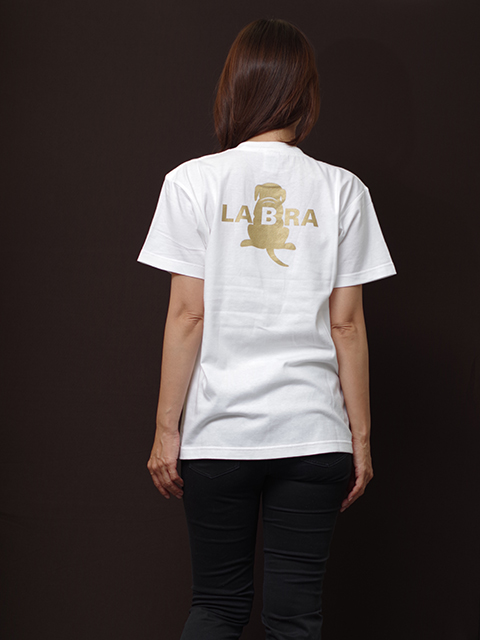 スペシャル斜めTシャツ [ネコポス対応]