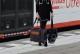 Royal Tails Alice ロイヤル テイルズ アリス 7通りの使い方ができる多機能なカート