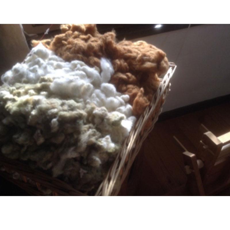 コットン 種付き 白 100g <綿 オーガニック 紡ぎ>