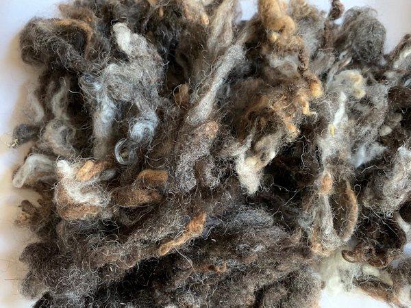 クロスブレッド・ミックスカラー(洗毛済み)100g <紡毛 紡ぎ 染め 羊毛 フェルト>