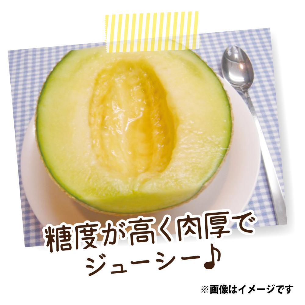 千葉産 飯岡メロン(タカミ) 3L/4玉