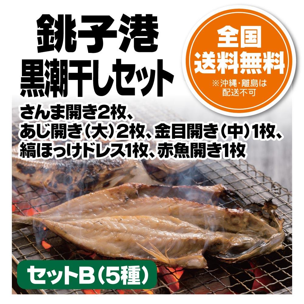 銚子港黒潮干しセット B(5種)