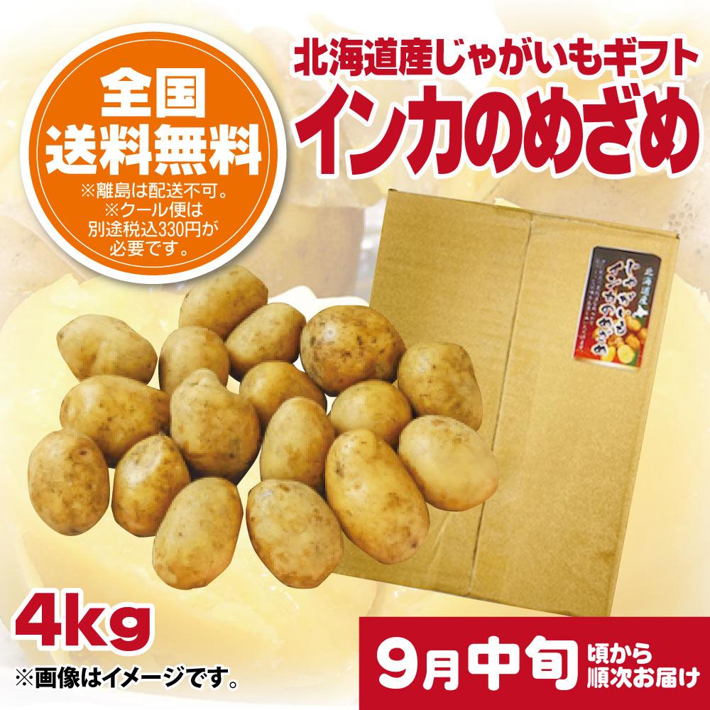 【9月中旬頃配送開始】北海道産じゃがいもギフト インカのめざめ 4kg【予約販売】