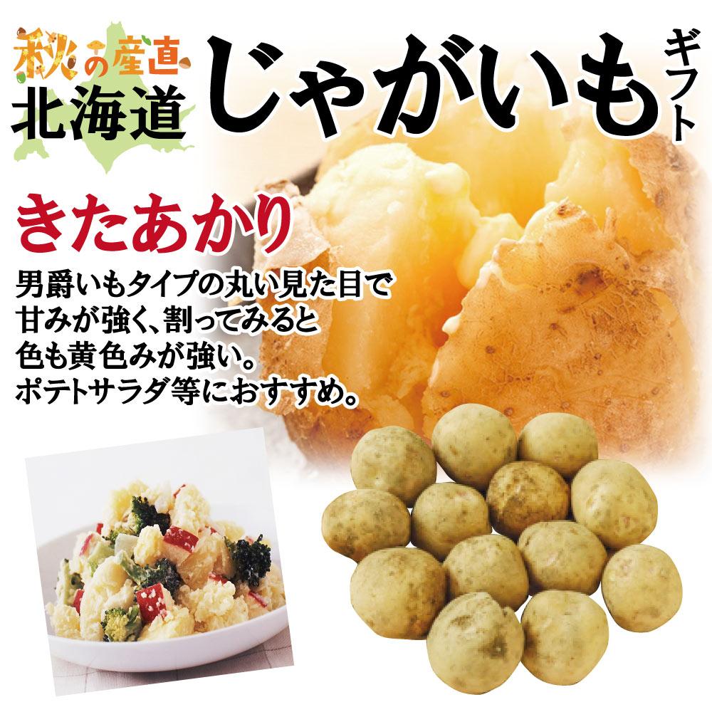 【9月中旬頃配送開始】北海道産じゃがいもギフト 北の極旨じゃが芋食べ比べ インカのめざめ 2kg・きたあかり 2kg【予約販売】
